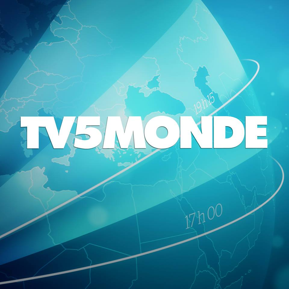 embracing-le-zapping-guide-watching-french-tv-online1
