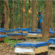 শেরপুরের গারো পাহাড়ে জনপ্রিয় হয়ে উঠছে মৌচাষ